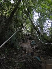 登山的階梯