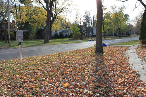 Marshfield, Wisconsin - Fall Leaves on Park Street