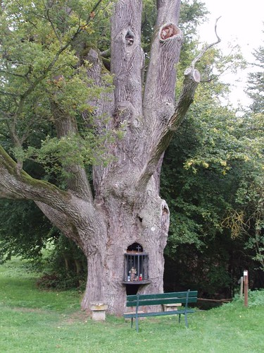 201009120031_Hersbourg-oak-tree-shrine