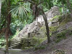 Mundo Perdido, Tikal