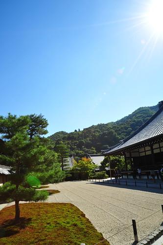 太陽と天龍寺