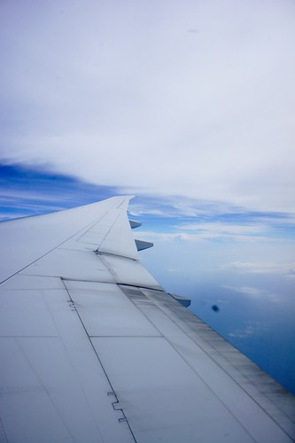 soaring in the sky