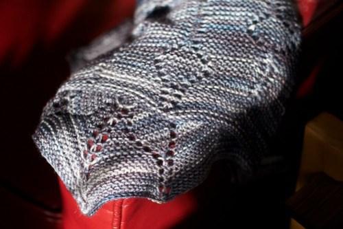 Stardust Milkweed detail