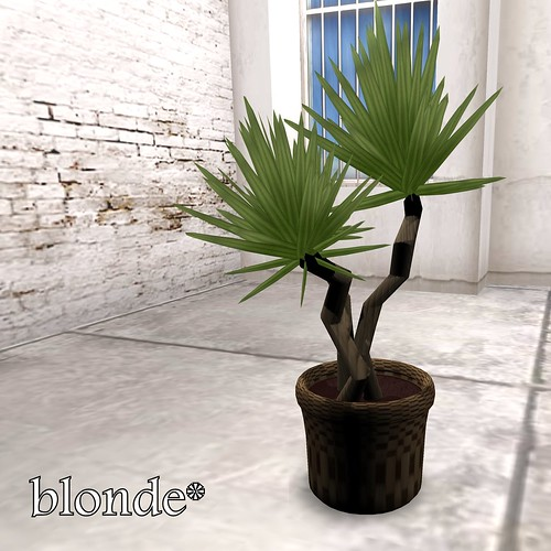 SL House & Garden Hunt - blonde*