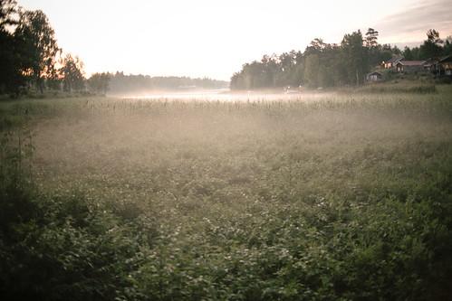 midsummer 2010