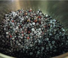 blueberriesinthepot