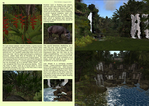 Prim Perfect Issue 27 - Summer 2010: Inside page - Exploring the rainforest