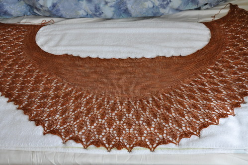 Little Leaves shawl.