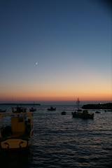 Sunset FISH TAVERN
