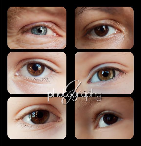 family eyes