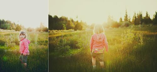 light in the woods by threelittlebirds {Mindy J}.