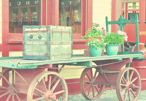 vintage cart w/ Florabella action