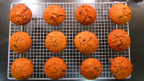 Spiced choco chip muffin © dan and  tuesday