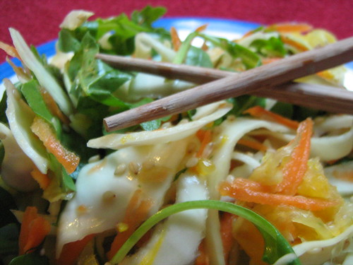 cabbage and carrot summer salad