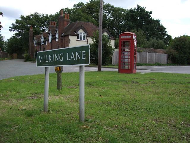 Milking Lane, Leaves Green