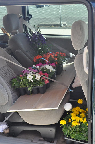 mini van full of flowers