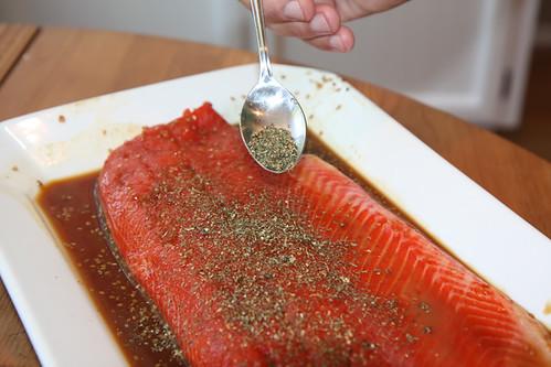 Grilled Teriockeye Salmon 3