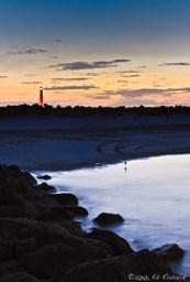 Ponce Inlet lighthouse, sunset, bird