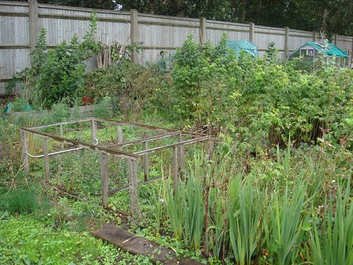 new allotment 1
