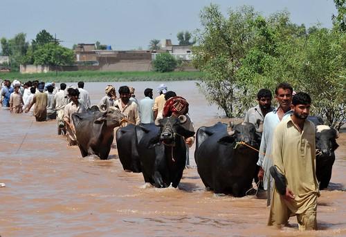 Pakistan floods