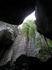 """""""La Catedral"""" del Gran Tsingy"""