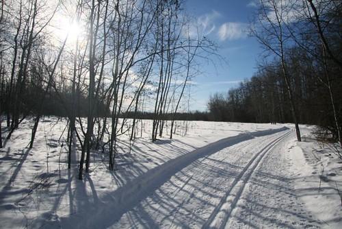 Back to the ski trail 99/365