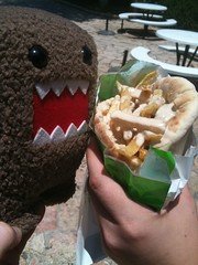 Domo-kun and a pita full of falafel