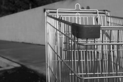 Portrait of a Shopping Trolley