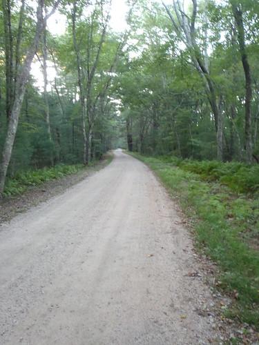 Blitzkrieg Trail, Arcadia, Exeter, RI