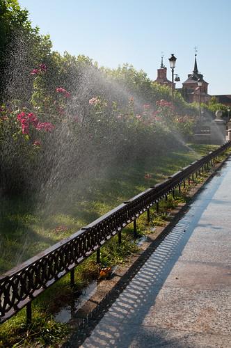 Regando los jardines de la Plaza de Cervantes (II)