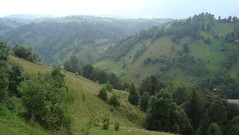 RT2010: Transylvania