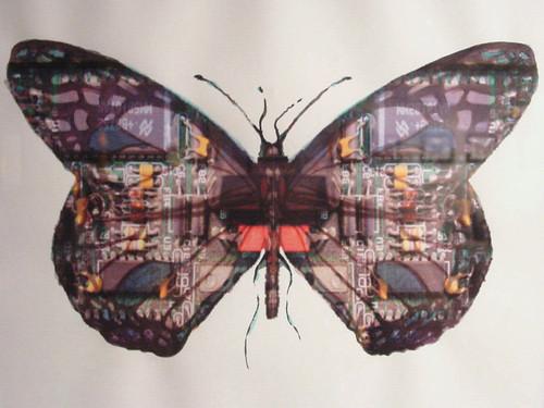 Circuit Board Butterfly #16
