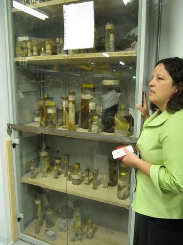 Karen & Darwin's specimens
