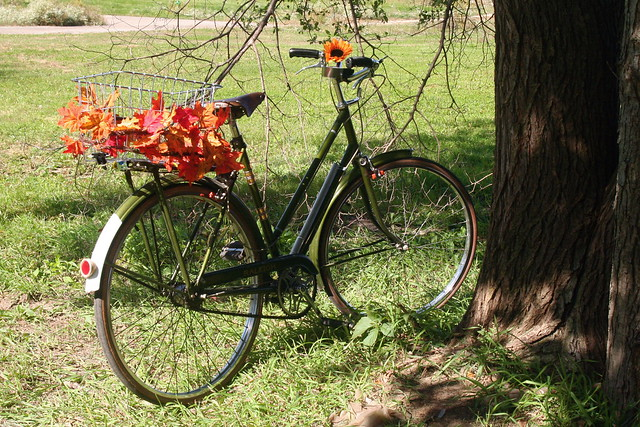 Fall Raleigh © Simply Bike