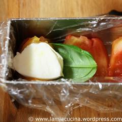 Tomaten-Mozzarella-Terrine 1_2010 08 14_8897