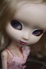 107/365 Daisy