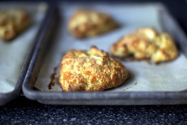 apple cheddar scone