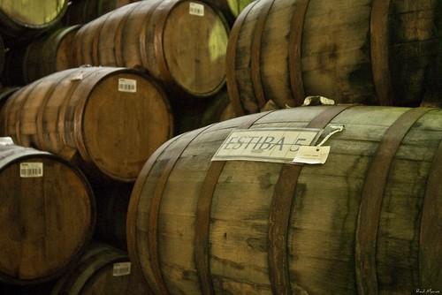 Barriles de tequila en añegamiento