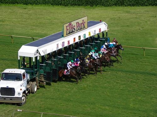 Ellis 8-21 Race 5