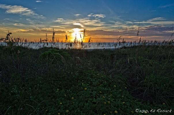 Sunset, pelican, and parhelia