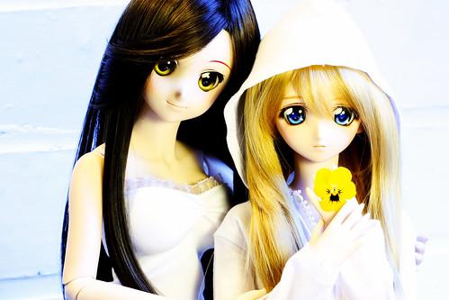 Yoko, Shizuko and a flower