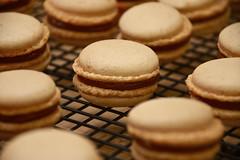 Pumpkin–Dulce de Leche Macarons