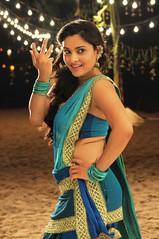 Indian Actress Ramya Hot Sexy Images Set-2  (48)