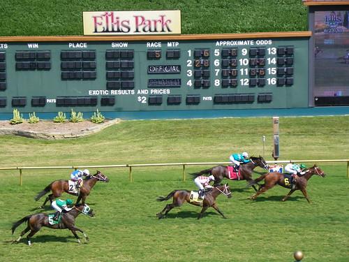 Ellis 8-21 Race 5f