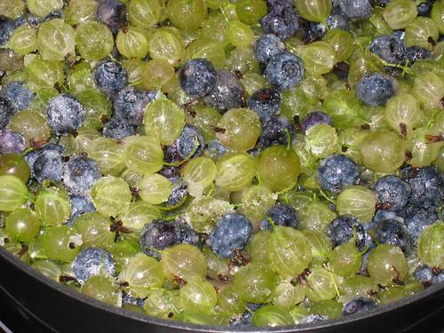 Gooseberries and Blueberries