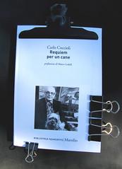 Carlo Coccioli, Requiem per un cane, Marsilio ...