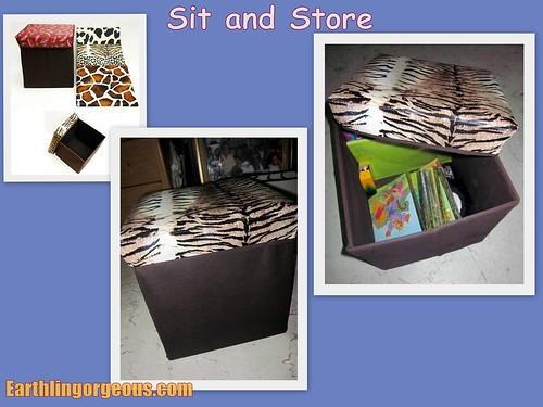 Sit and Store