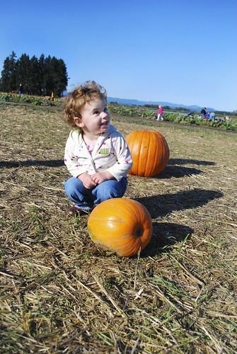 A Pumpkin!