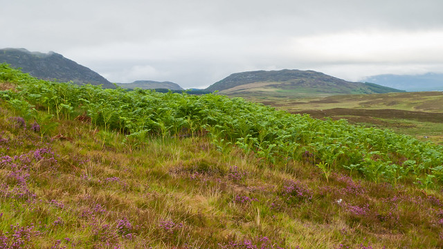 The slopes of Creag Bheag