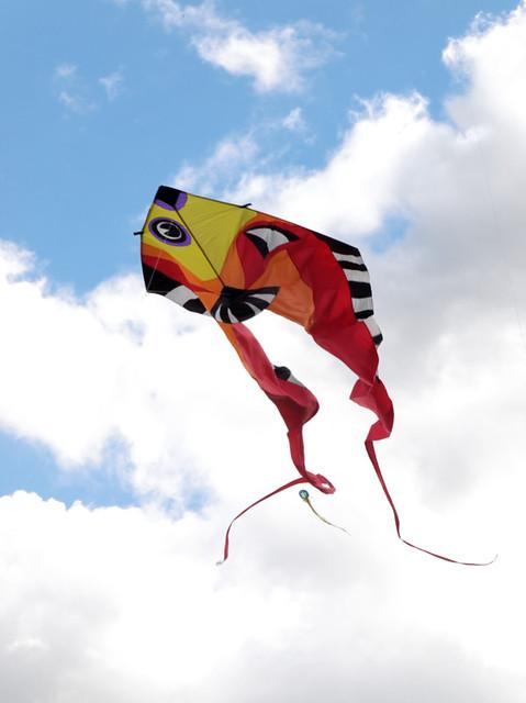 Eggerdon Hill Kite Festival 2010_2